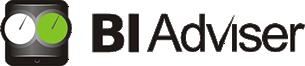 Business Intelligence - BI Adviser Romania