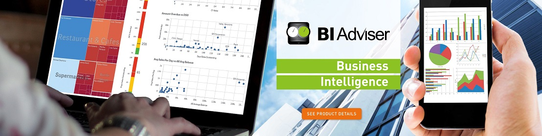 BI QlikView - Business Intelligence software, Cluj - Romania, Sales Intelligence