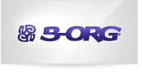 B-ORG ERP