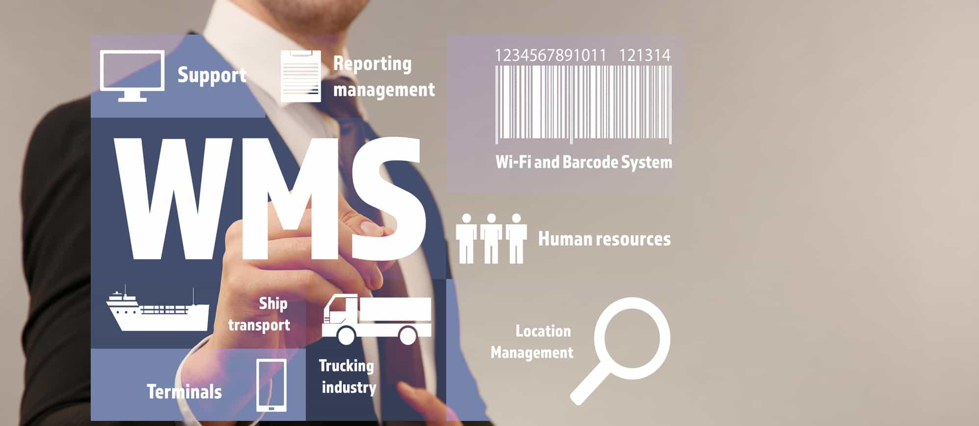 wms ce este wms warehouse management system