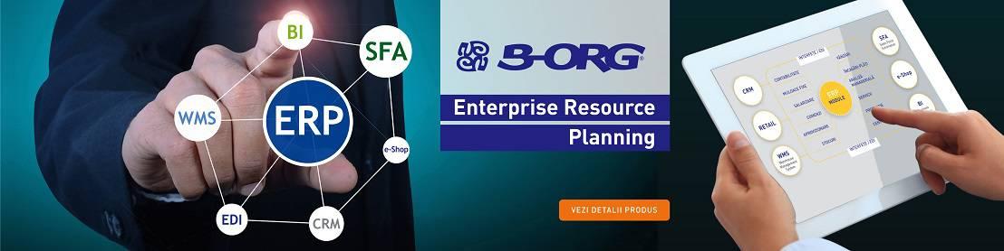 ro4-ERP-B-ORG-1108x278